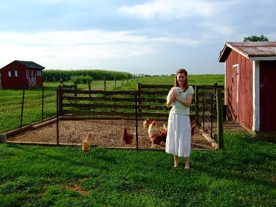 I want my own farm with chickens!!