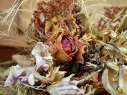 Resultado de imagem para folhagem artificial folha platano
