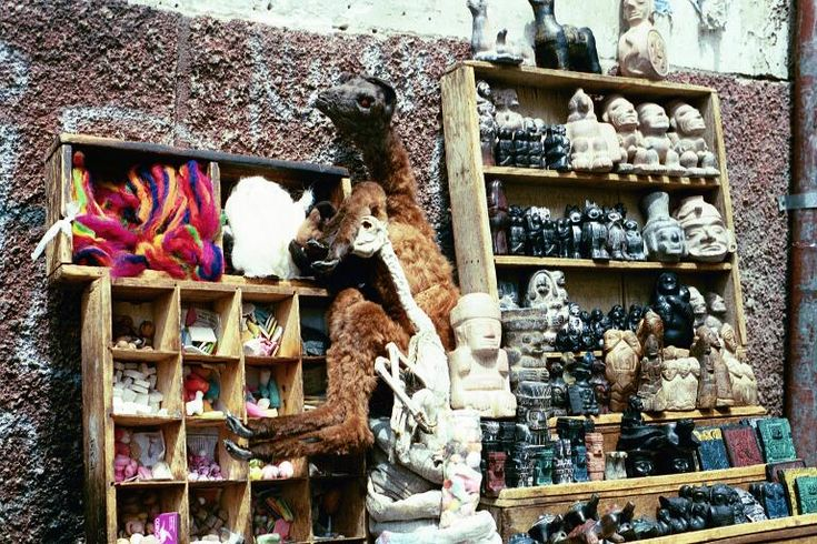 Llama Fetuses sold at the Witches Market (Mercado de los Brujos).  Bolivian's believe if you bury a fetus in the ground of a new building, it produces good luck. The witches market also sells talismans, ingredients such as  eye of frog, claw of crow and ear of elephant among other things.