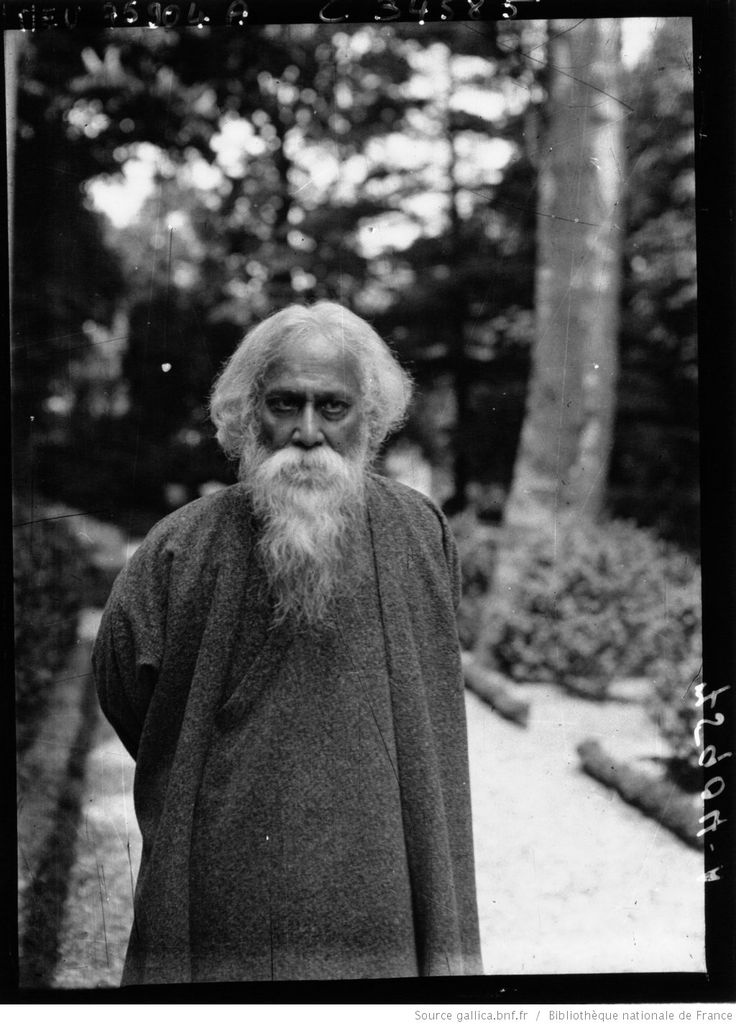 Rabindranath Tagore World Literature Analysis - Essay