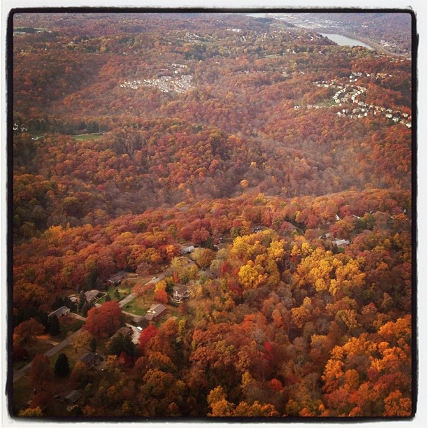 17 best images about fall in pittsburgh on pinterest