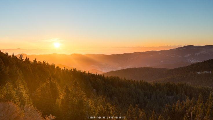 Lever de soleil sur la forêt vosgienne - Lever de soleil sur la foret vosgienne avec les alpes en arrière plan