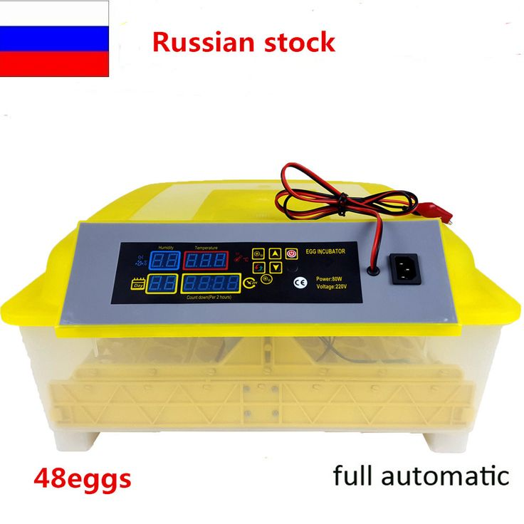 Hot sale 48 eggs mini incubator 12V or 110V or 220V fully automatic mini bird eggs incubator for sale