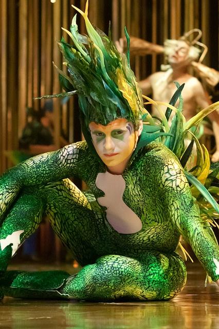 Seaweed Hair - Cirque Du Soleil  -Varekai