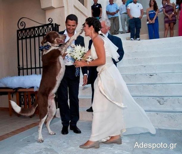 Ένας παραμυθένιος γάμος... με ουρά!