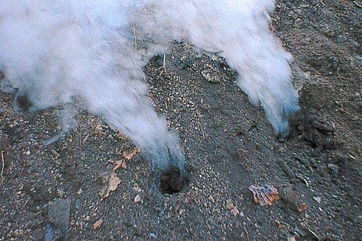 Avete mai provato a cuocere le uova o il pollo al cartoccio sotto la sabbia? Alle #fumarole #Ischia si può