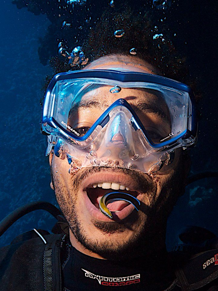 Brushing teeth...with cleaner wrasse...seen on Canyon dive site, Dahab, Red Sea