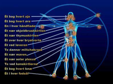 MENNESKE KEND DIG SELV.  CHAKRAER OG CENTRE.  Når to typer af energi møder hinanden forøges energimængden, og på denne måde dannes der centre.  De æteriske nadier krydser hinanden flere steder i det fysiske legeme.  Når to typer af energi møder hinanden forøges energimængden, og på denne måde dannes der centre i kroppen med øget energikoncentration.  Der, hvor enogtyve nadier krydser hinanden, skabes der en kraftig energikoncentration og syv primære centre.  Fem af de syv centre ligger langs…