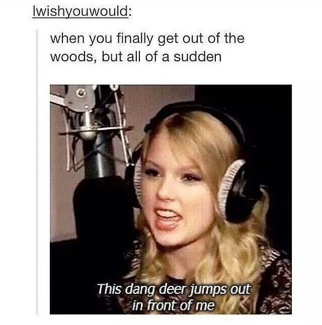"If you remember this, you're awesome. If you've never seen it, look up ""Taylor Swift dang deer"" and try to be alive afterwards"