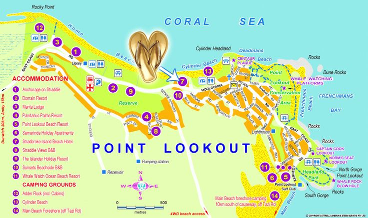 Stradbroke Island Australia.