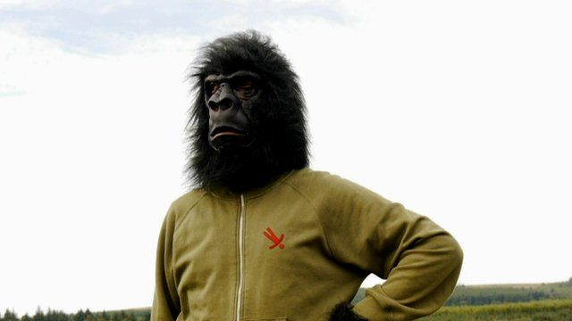 Mick Sheridan, the Carmarthenshire guerrilla / gorilla upholsterer.