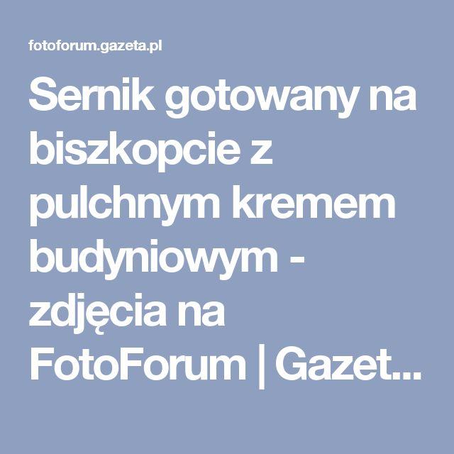 Sernik gotowany na biszkopcie z pulchnym kremem budyniowym  - zdjęcia na FotoForum   Gazeta.pl
