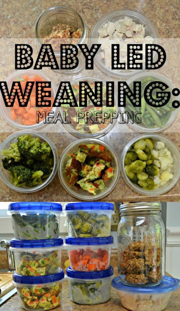 Baby Led Weaning Meal prepping