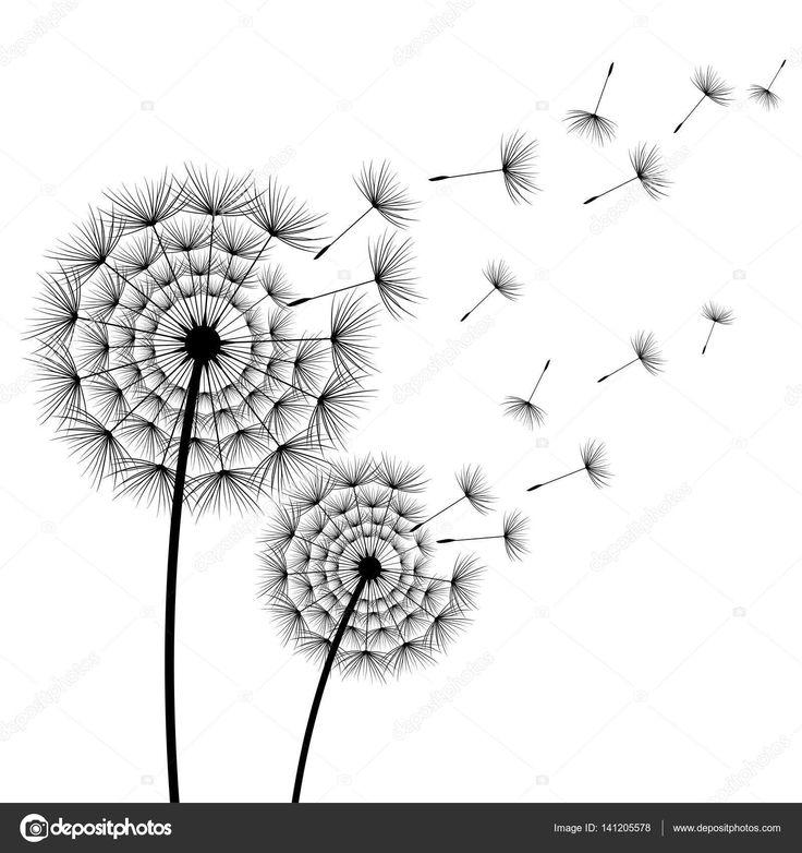 Due denti di Leone di bei fiori stilizzati neri e volante lanugine su priorità bassa bianca. Moderno alla moda floreale di estate o primavera carta da parati. Sfondo di natura trendy. Illustrazione di vettore