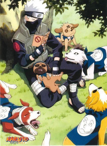 Hatake Kakashi > Chuck Norris    Because Kakashi has a pack of talking ninja doggies :D