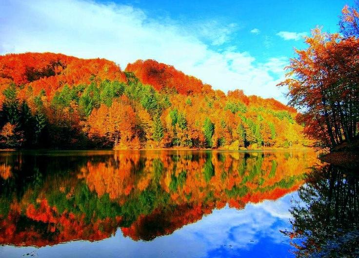 Bodi Lake , Maramures - Romania