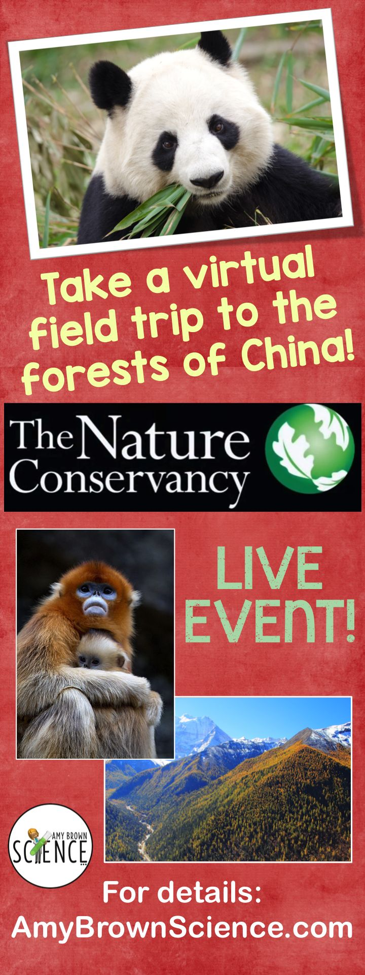 Virtual field trips in your science classroom can take your students to places they never dreamed of going!  The Nature Conservancy, NatureWorks Everywhere and We Are Teachers have teamed up together to deliver this amazing live event right to your classroom.  There are also loads of free downloadable materials for you to use with your students.