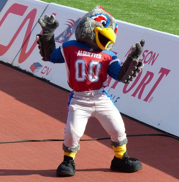 Touche, Montreal Alouettes mascot.