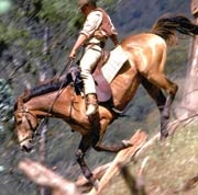 Man from Snowy River, love this movie