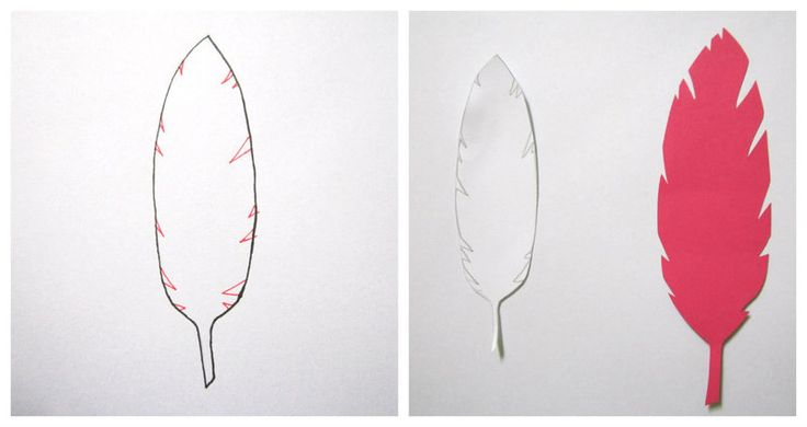 Paper Feather Template | Paper Feathers ∙ How To by Tabby on Cut Out + Keep