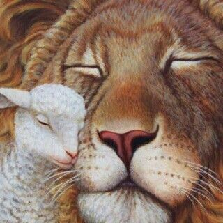 The Lion and The Lamb ~ where there is no fear, only love resides... ♥♥