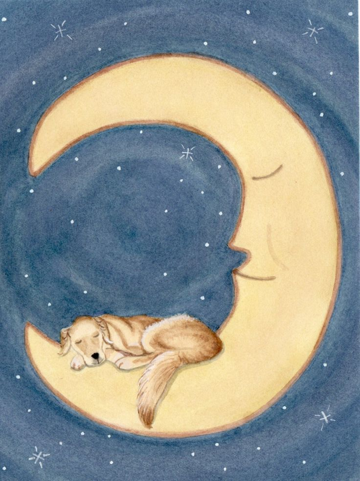 Golden retriever sleeping on the moon / Lynch signed folk art print. via Etsy.