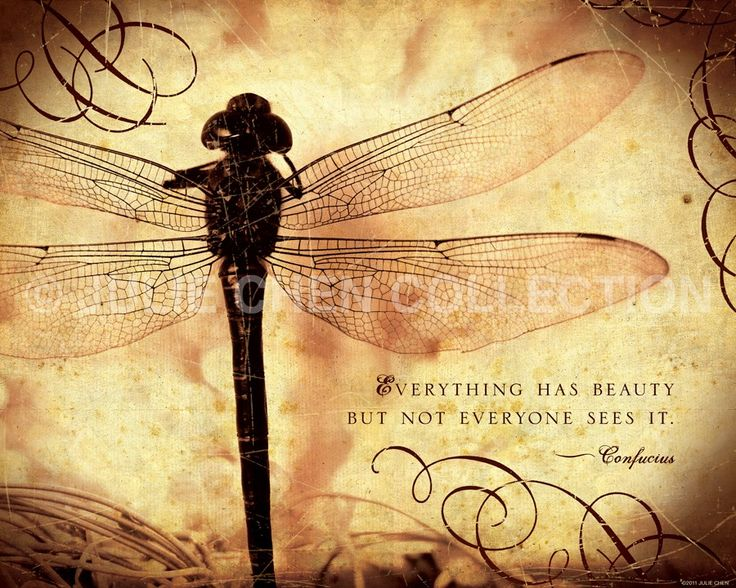Inspirational Art : Everything Has Beauty (Confucius quote) 8x10 Fine Art Print. $20.00, via Etsy.