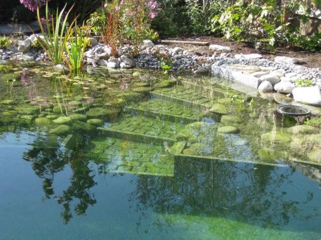 die besten 17 ideen zu naturschwimmteich auf pinterest schwimmteich moderne pools und graues. Black Bedroom Furniture Sets. Home Design Ideas