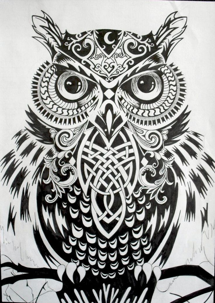 Mr. Owl (complete) by im0rtality.deviantart.com on @deviantART