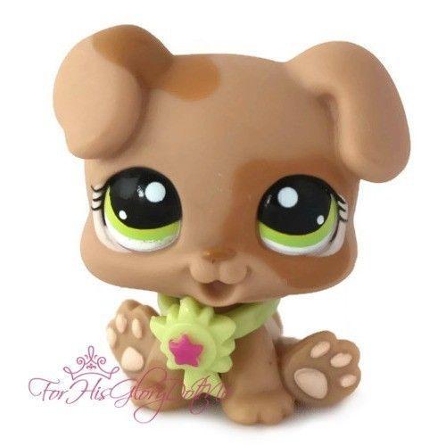 lps brown dog littlest - photo #35