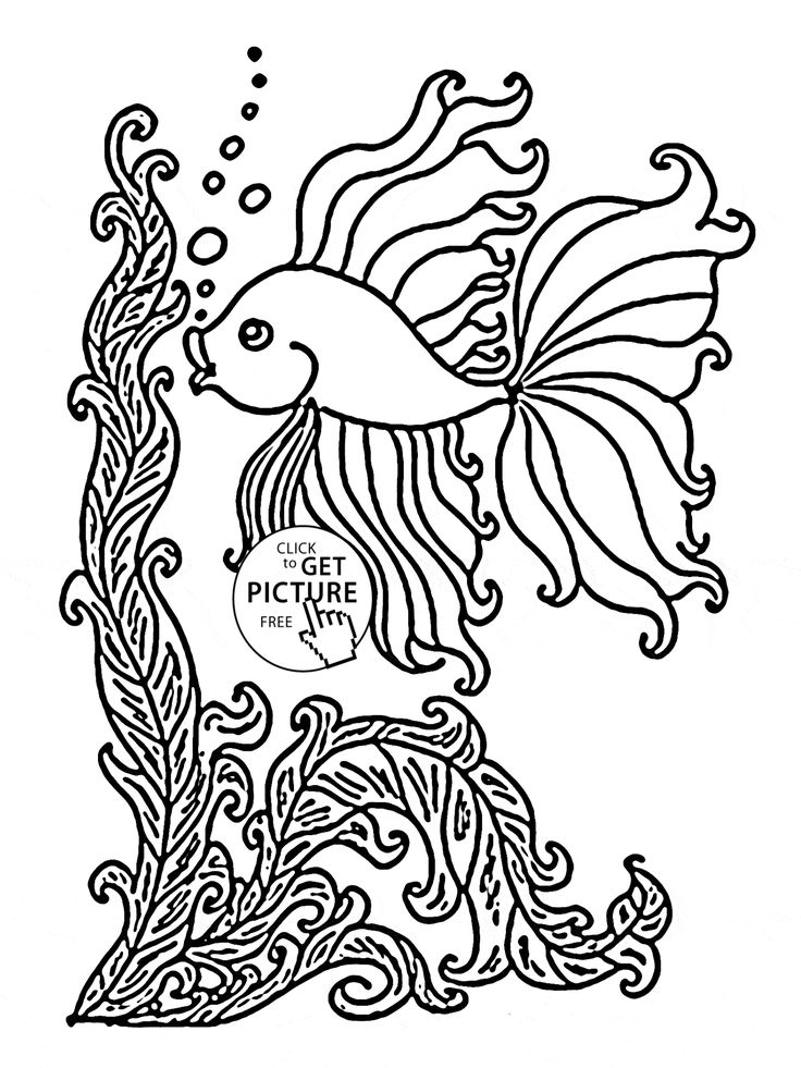 19 Best Fish Coloring Pages Images On Pinterest