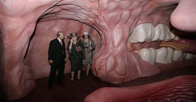 Ένα πρωτοποριακό Μουσείο για το ανθρώπινο σώμα! Το πρωτοποριακό αυτό μουσείο βρίσκεται στην Ολλανδία και ονομάζεται «Corpus Museum for Ηuman Βody», αποτελώντας ένα καινοτόμο project σχετικά με τον τρόπο προσέγγισης του ανθρώπινου σώματος και των λειτουργιών του από τον ίδιο τον άνθρωπο. Στην ουσία είναι ένα γιγαντιαίο ανθρώπινο σώμα, ενώ κάθε χώρος του Μουσείου αποτυπώνει …