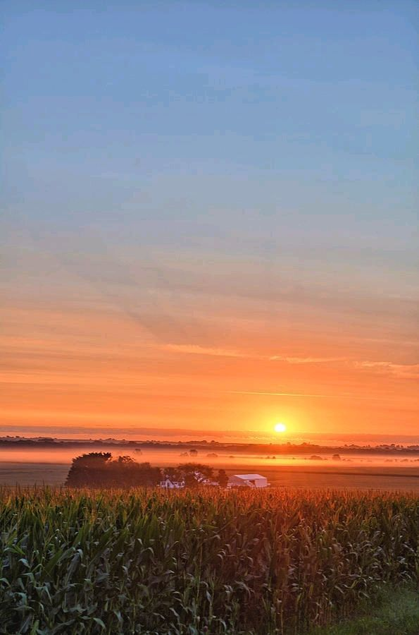 Farm And Fog Sunrise 2 With Images Sunrise Farm Sunrise Photography