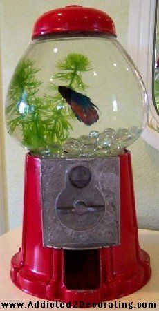 Repurpose a gumball machine into a cool fish tank. What a fun idea for a kids room!