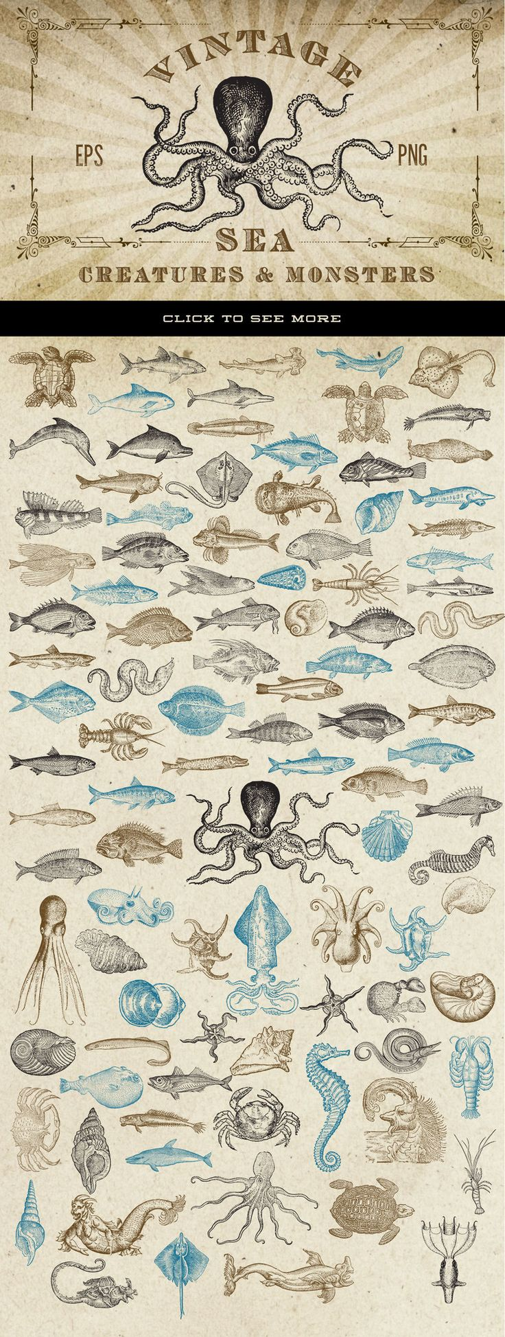 This is a collection of antique / vintage vector graphics of fish, octopus, lobster, shark, sea monsters, eels, crab, shrimp, and more that have been carefully chosen from a variety of sources from th