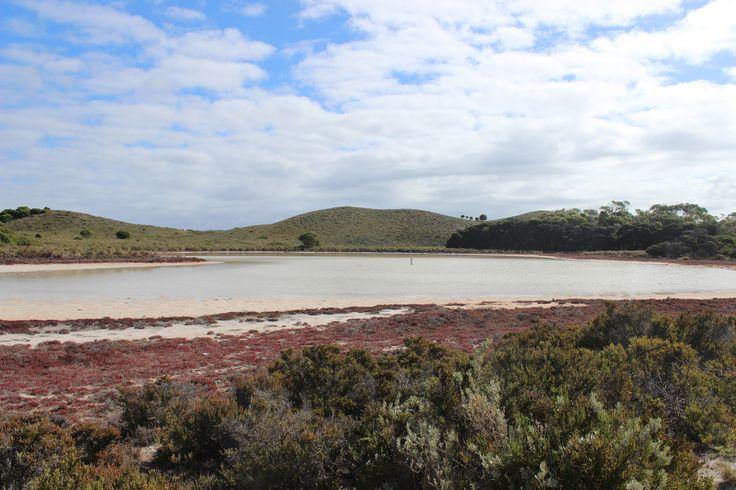 Pink Lake - Rottnest island - Western Australia