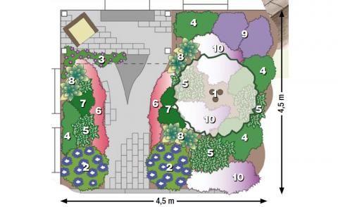 Pflanzidee mit Blumen-Hartriegel