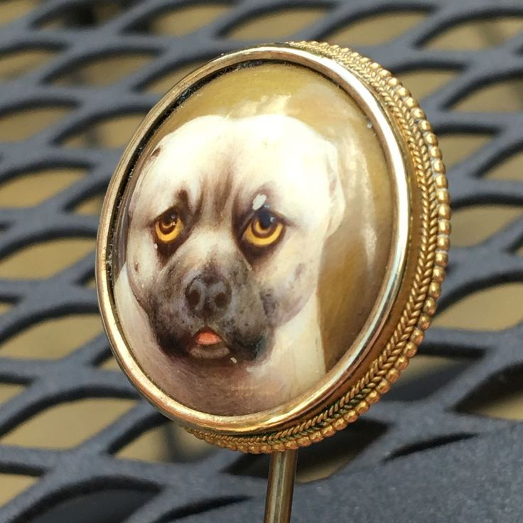 Victorian hand painted stickpin Portrait of dog By renowned British painter of minatures especially dogs William Bishop Ford 1832-1922 W.B.Ford This is dated 1873 Set in unmarked gold I would say high carat The porcelain portrait is lovely I'm not sure of the breed of dog Measures 2.2cm The total length is approx 8.5cm Please read carefully : Above the dogs right eye there is marking scratch please see pictures Does have other small nibbles But for age is in good condition S...