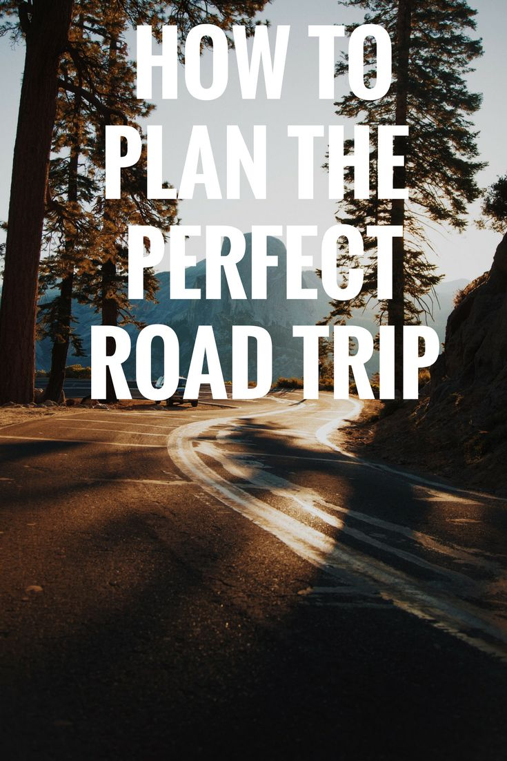 How To Plan The Perfect Roadtrip | Fasten Your Seatbelt | Home