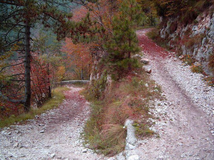 Monte Grappa (Italy)