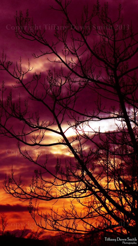 Nature Photography  Sunset Clouds Purple by TiffanyDawnSmith, $30.00
