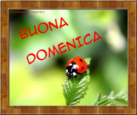 Estremamente 277 best BUONA DOMENICA images on Pinterest | Backgrounds  GA63