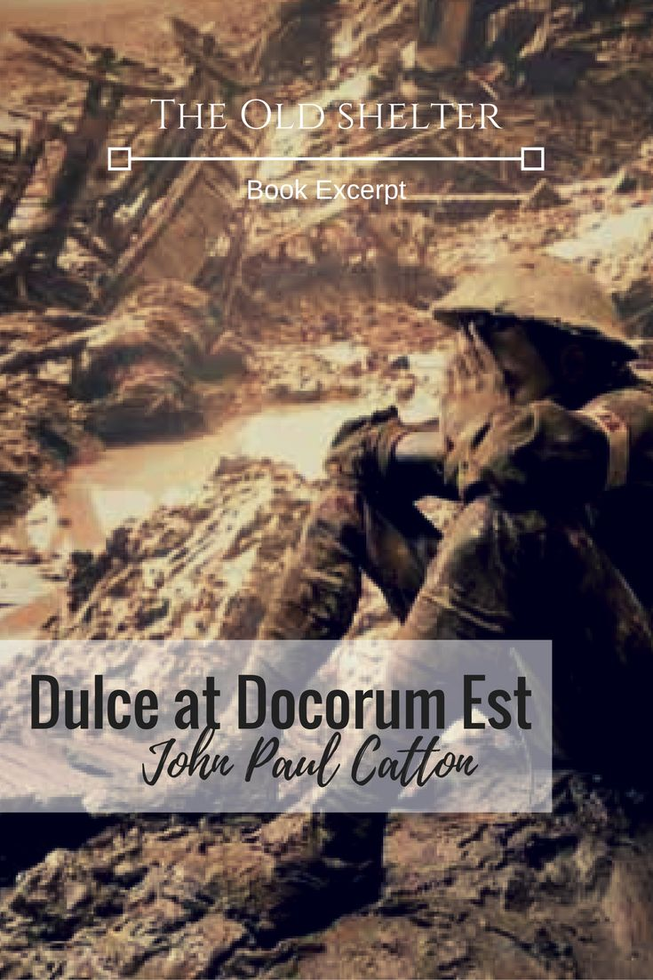 """The hideous miasma rolled along the shattered landscape. The Germans tried to outrun it, but they were too slow. The mist enveloped them"" - DULCE ET DECORUM EST by John Paul Catton"