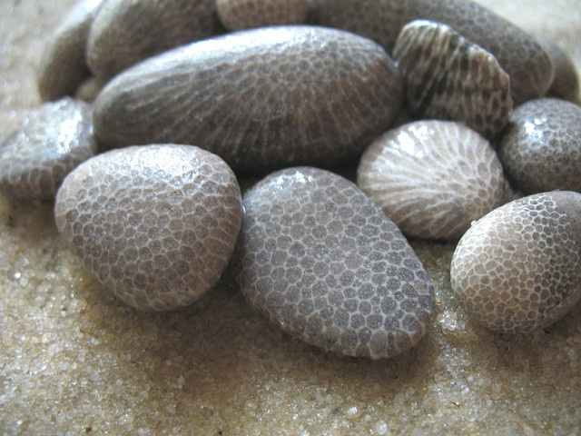 | charlevoix stones |