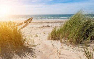 Urlaub am Strand von Renesse