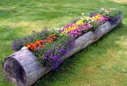 Ideas para decorar con troncos