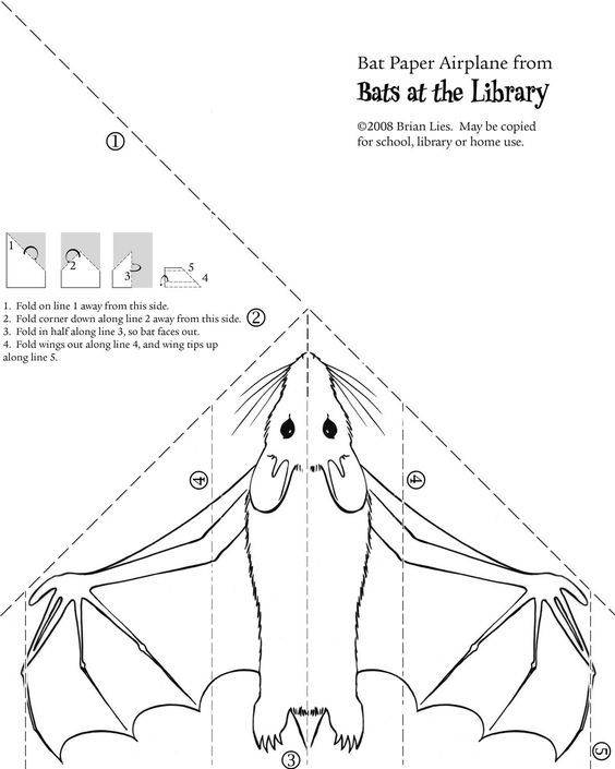 Bat paper Airplane craft.