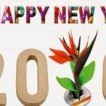 New Year 2016 Quotes in English, New Year 2016 Quotes in Marathi, New Year 2016 Quotes in Hindi, New Year 2016 Quotes in French, New Year 2016 Quotes in Spanish, New Year 2016 Quotes in Arabic, Happy New year 2016 Funny Quotes, New Year 2016 Nonveg Quotes, New year 2016 Sexy Quotes, Happy new year Quotes in English