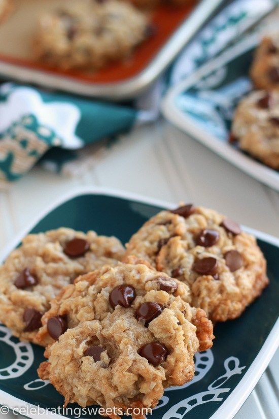 Coconut Oat Chocolate Chip Cookies