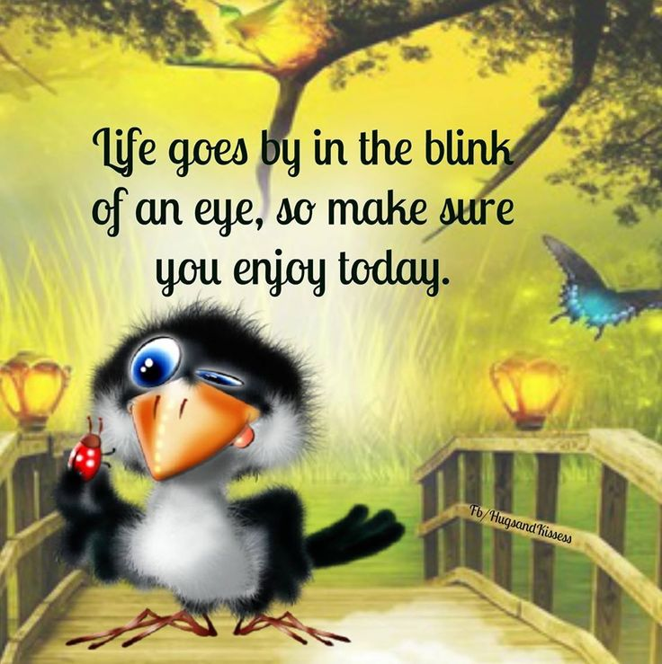 Life Goes By In A Blink Of An Eye Enjoy Today life quotes quotes positive quotes…